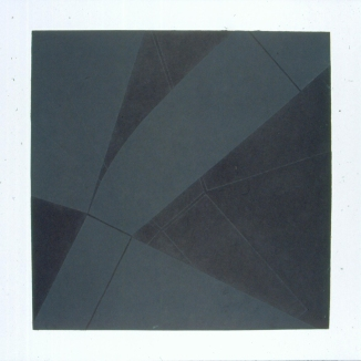 "intaglio and chine colle, 22"" X 22"""