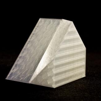 Artificial Selection, 3D print